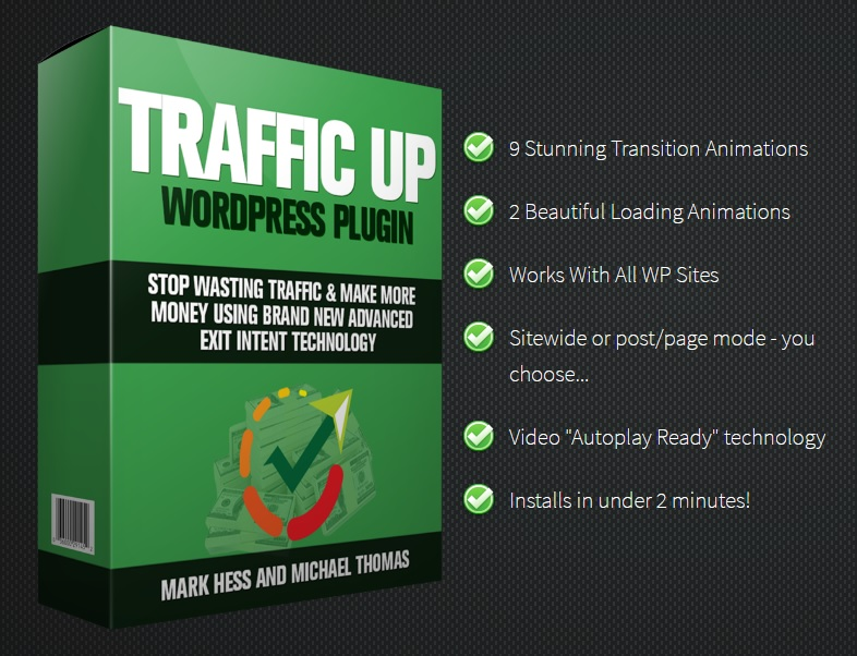 REVIEW:  WP Traffic Up